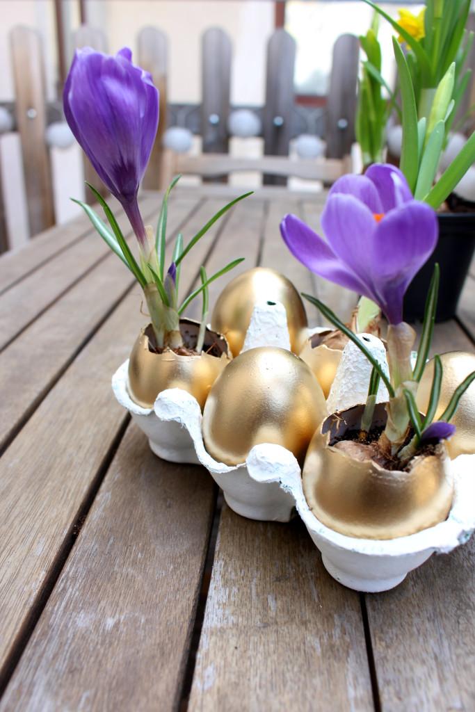 bepflanzte Eier