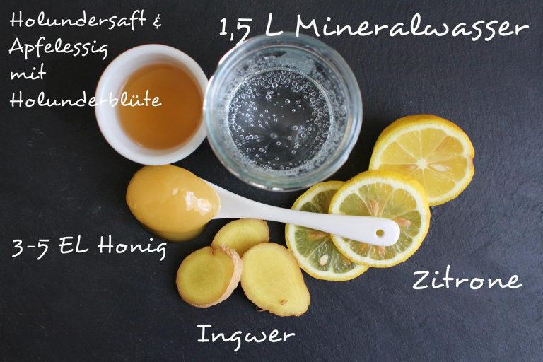 Switchel - Holunder Essig Limonade - nonolicious